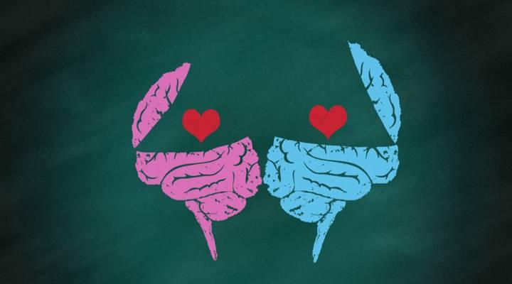 Müşterilerin Zihinlerini ve Kalplerini Nasıl Kazanırsınız?