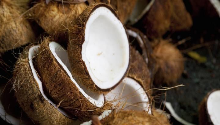Emlak Pazarlamasında Sıradışı Bir Yöntem: Coconut Postaları